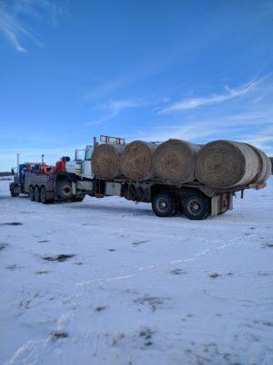 Heavy wrecker hauling a truck of hay bales.